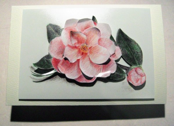 camellia card for my granny