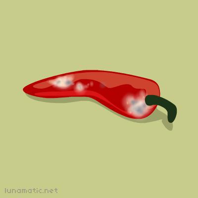 Moldy chilli