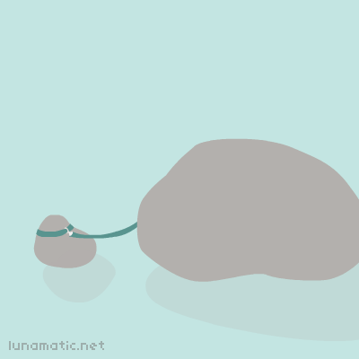 The pet rock of a pet rock