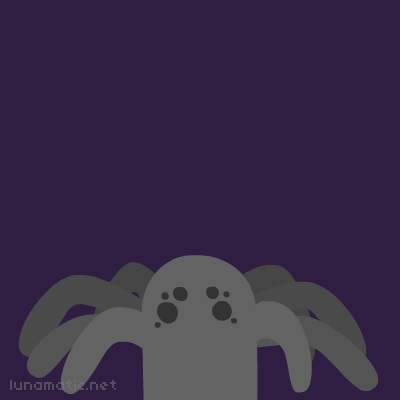 A gray spider